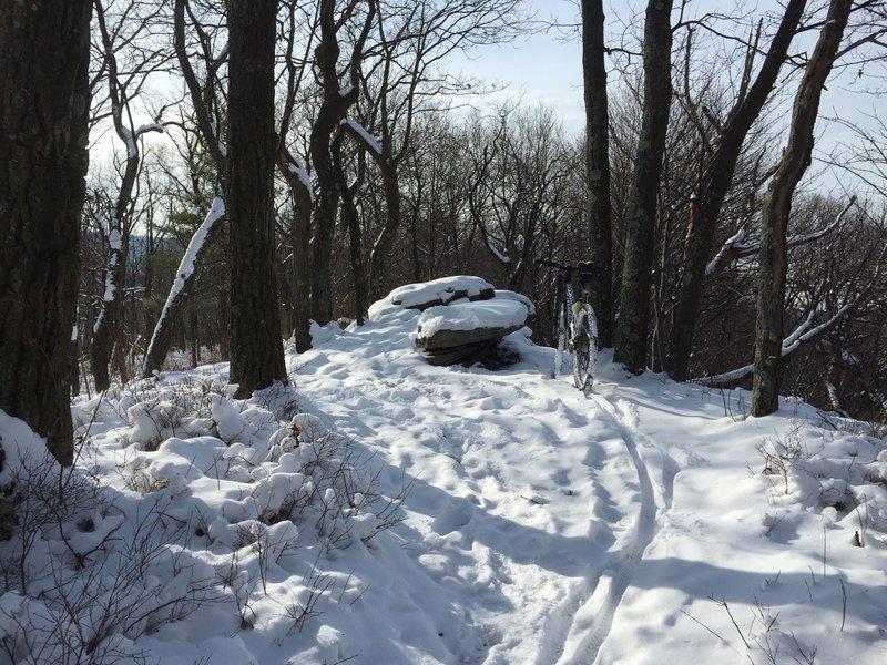 Winter on Bald Knob Trail
