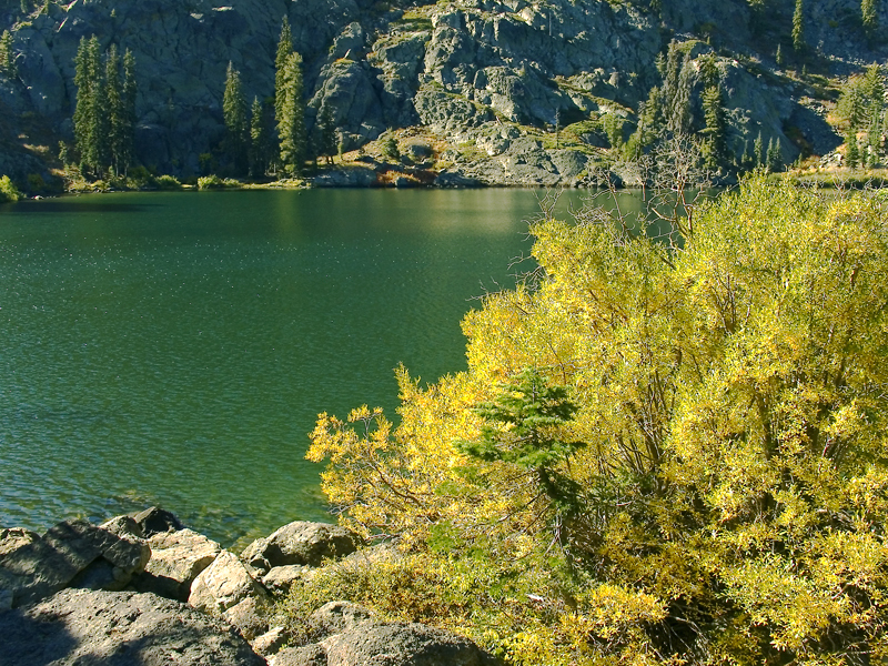 Nice spot next to Homer Lake- from Homer Deerheart Trail