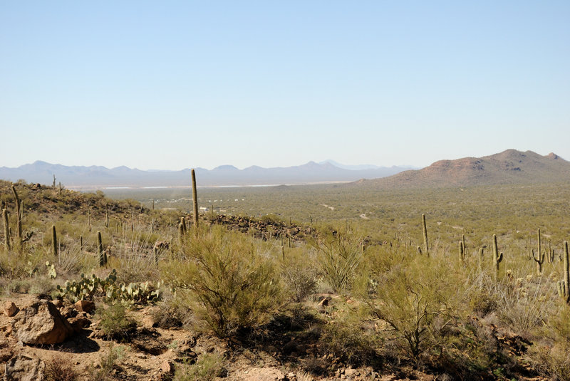 View of the desert