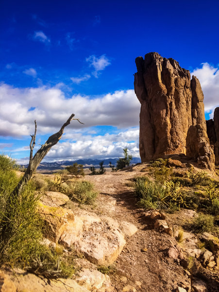 Just another fantastic view from Monolith Gardens Trail