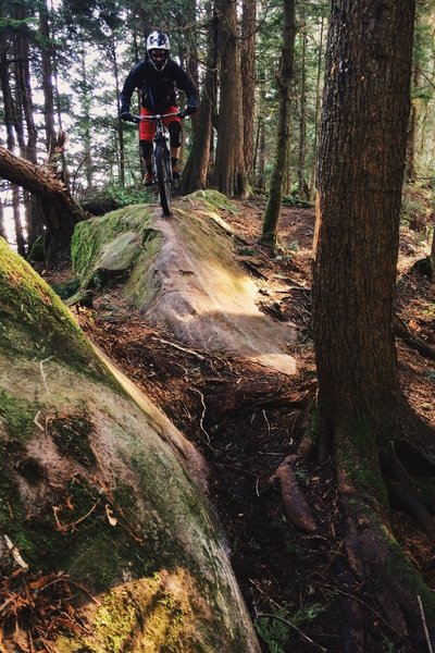Sandstone slab ride into a tree pinch.