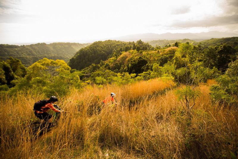 Descending Manana Trail in the golden light.