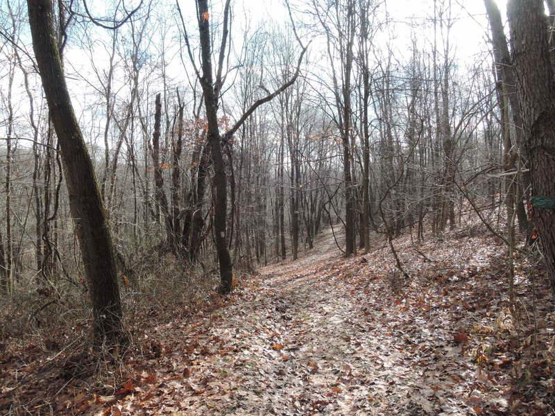 Beginning of White Trail
