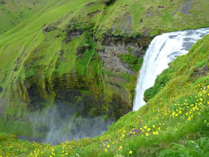 Falls & greenery!