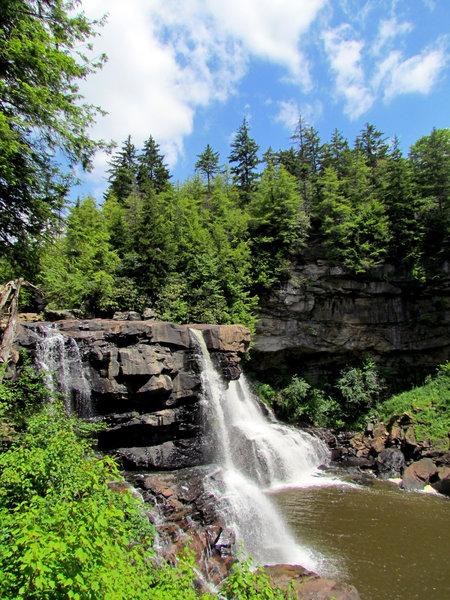 Blackwater Falls Blackwater State Park WV 8195