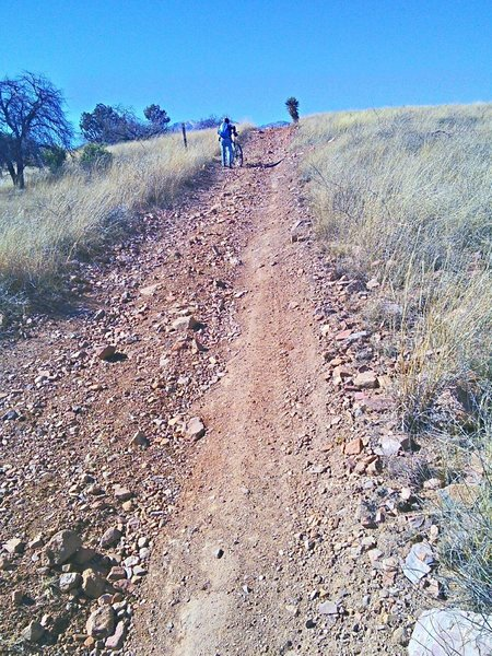 Road section of AZ Trail
