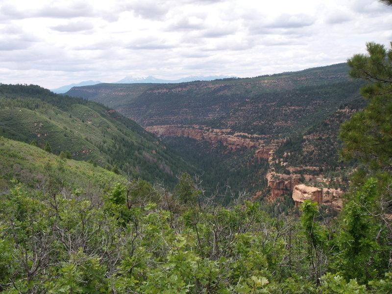 Tabeguache Canyon SMA
