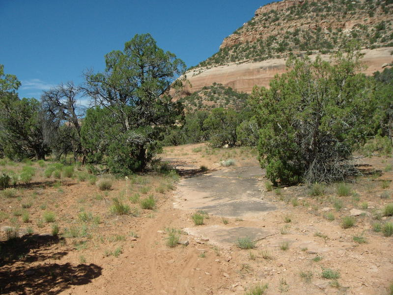 The two track up Red Canyon