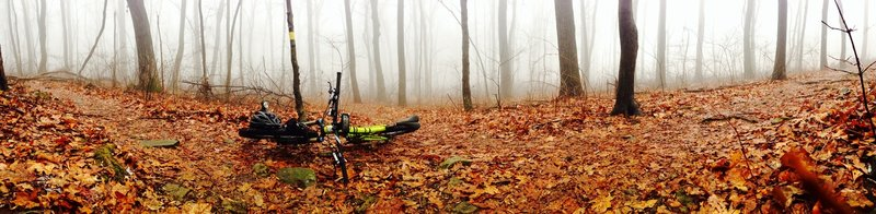 Taking a break on a foggy day before tackling the Mountaintop Trail.