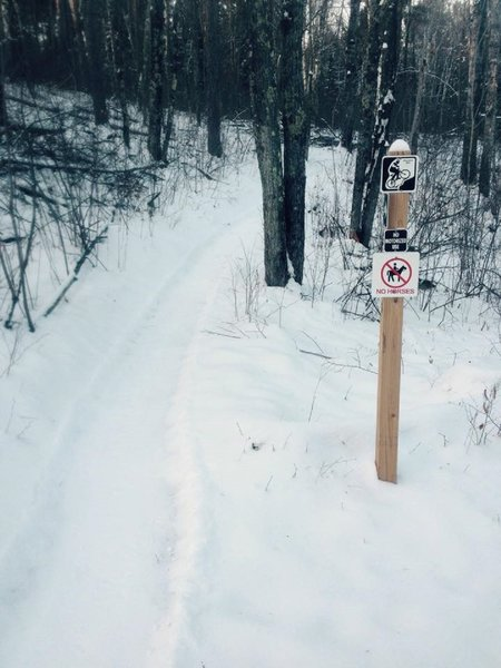 Fat Bike Trailhead