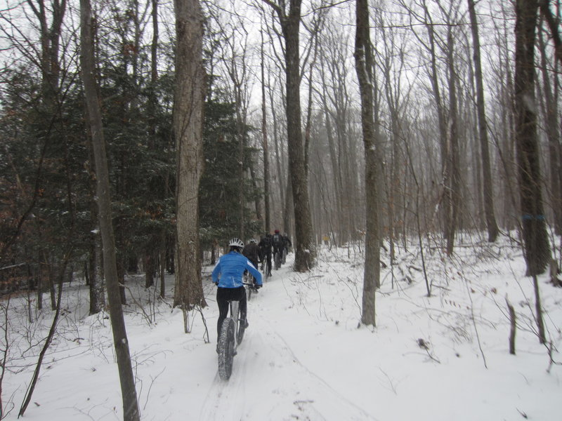 A snowy trail ride along trail Red 3.