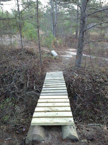Skinny bridge following technical section.  Petal River Park Trails