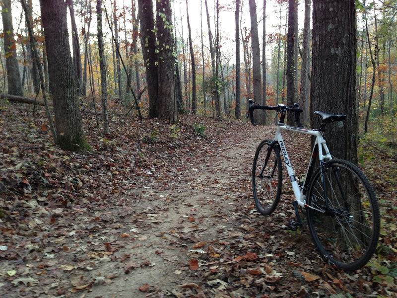 A great singletrack that's mellow enough for the CX bike.
