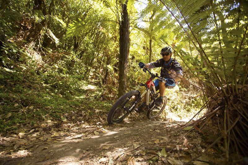 Riding through the bush on the Rotary Ride mountain bike trail