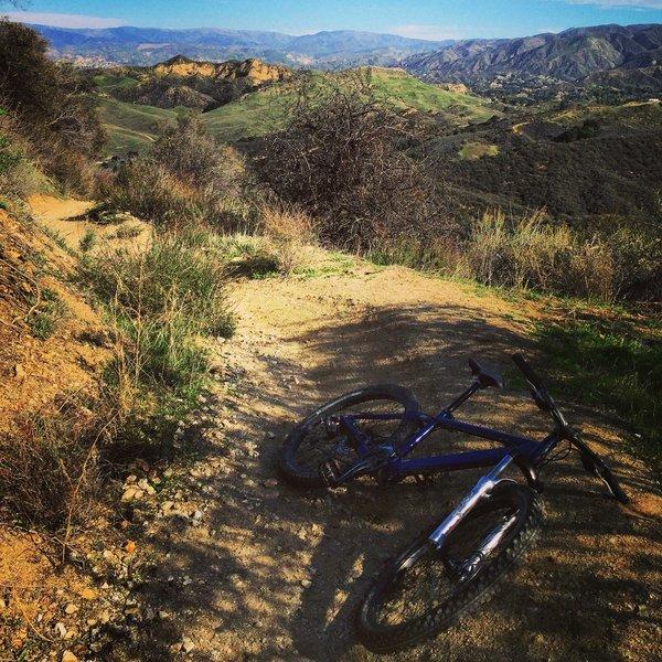 Placerita - on Los Pinetos Trail