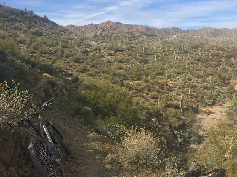 Plenty of narrow, fun decents and climbs with mellow grades through this section of Black Canyon Trail!