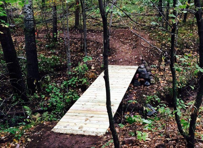 Bridge on Erratic Rock Trail