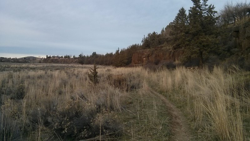 The majority of the trail is through tall grass and shrub on the east side of Dry Canyon.
