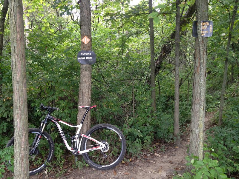 """The entrance to the """"Clown's Nightmare"""" section of the Crooked Vulture Extension loop.  So named because the section has very tight turns, and can be challenging for big 29er bikes."""
