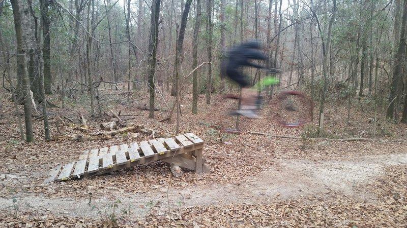 Progressive wood jumps