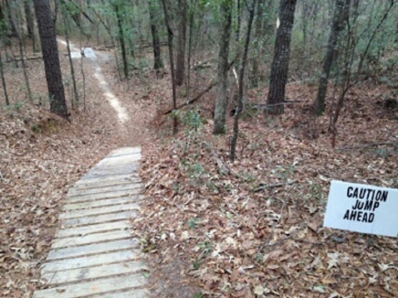 Progressive wood jumps on Ft Benning MTB Trail