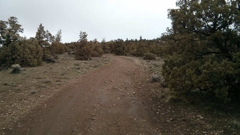 The dirt roads on the back side of the butte are steep and rough.