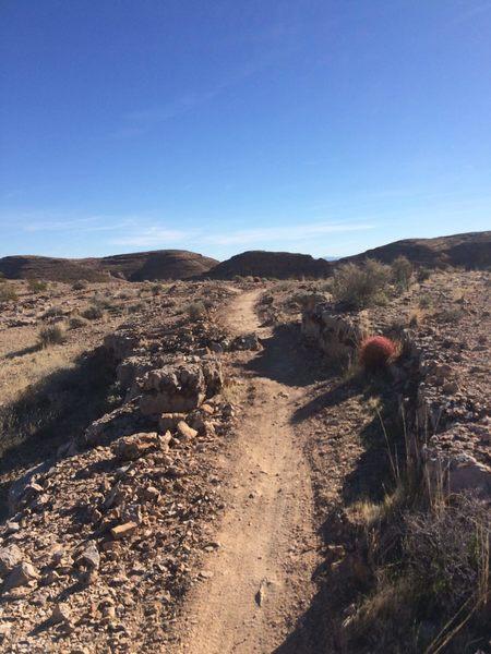 Buff singletrack on Good Call Trail...