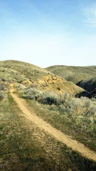 Highland Valley singletrack.