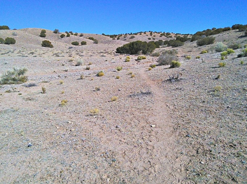 Trailhead at 5200 feet is one of the lowest in the Albuquerque area