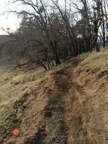 Rippin downhill section 3