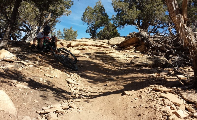 "This is right after the ""Stone Axe Hill"" section.  WATCH OUT because these hard, steep steps come immediately after a fast left turn.  I wasn't so lucky and took a tumble down them.  Ouch!  Good Luck."