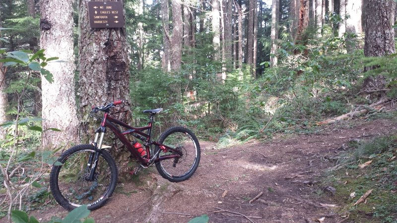 Trail junction. Go check out Sawtooth and Hardesty if you want. The trail does not go to Eagles Rest. You would have to ride along a road to get to Eagles.