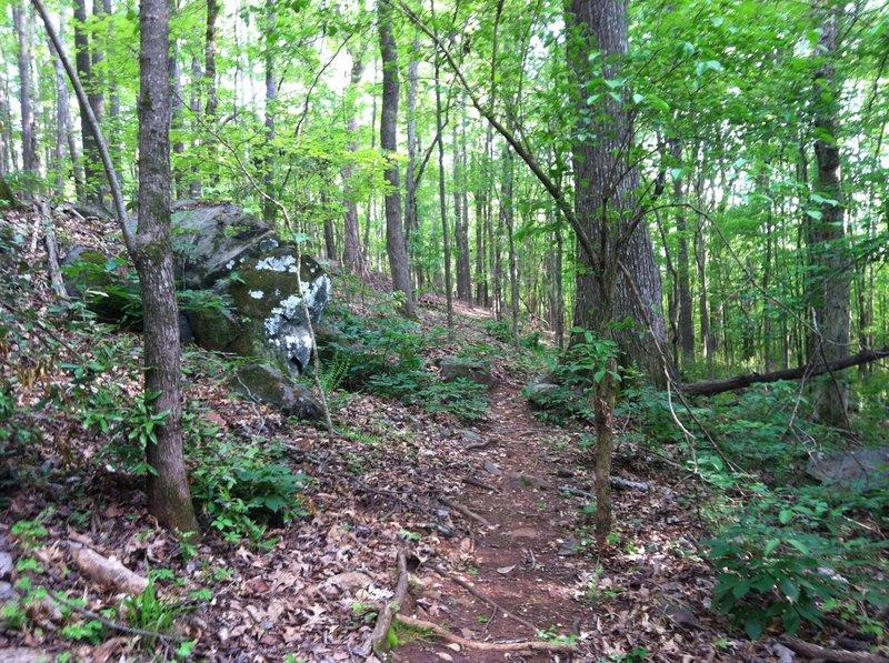 Narrow navigation by large boulder in mid spring.