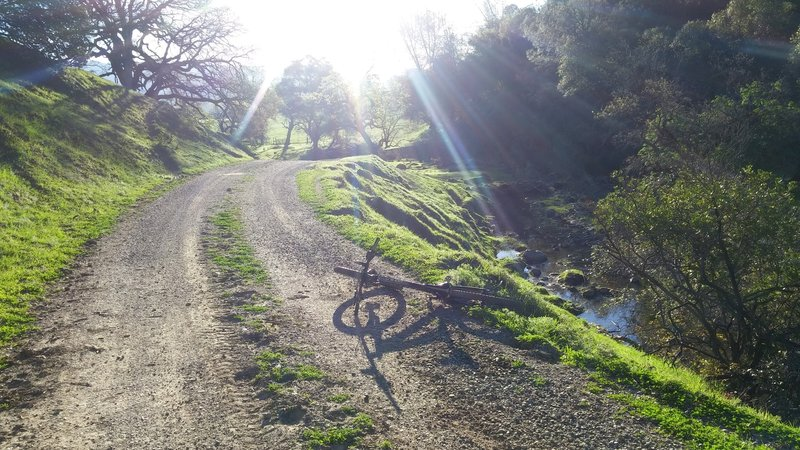 Not bad for a 'road' ride. Pierce Canyon Climb