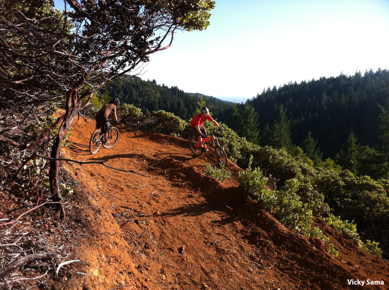 Heading down the switchbacks into the forest on Pacific Rim trail.