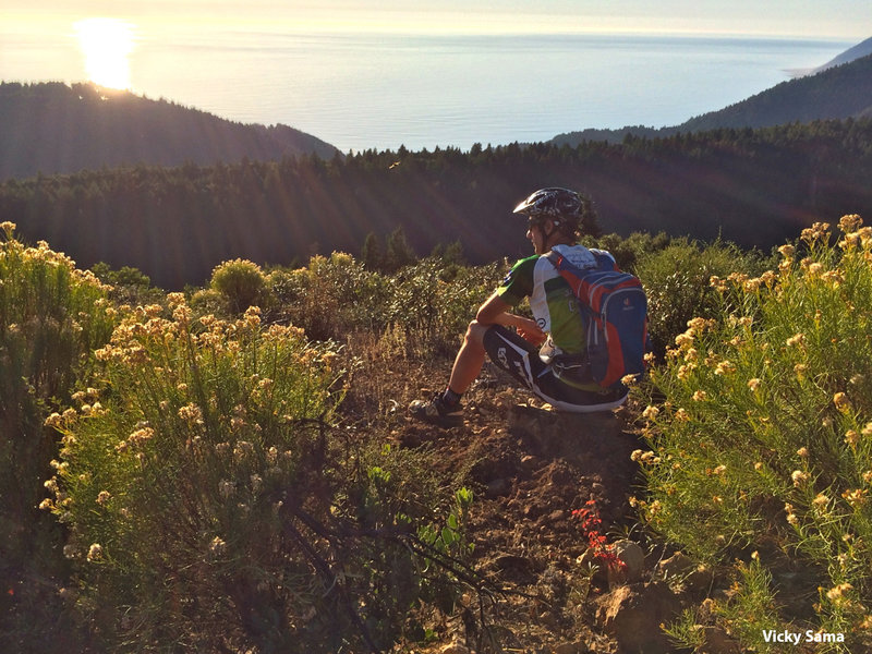 The Pacific Rim trail, part of the Paradise Royale Trail System, offers magnificent views of the Pacific Ocean.