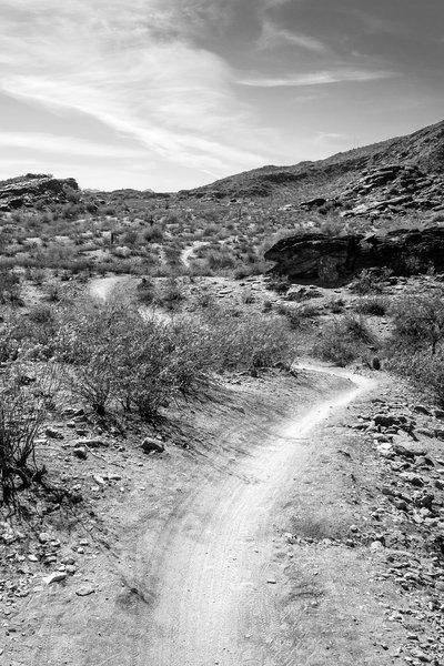 South Mountain, Arizona 4
