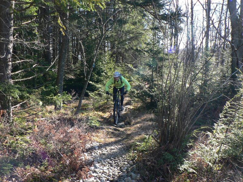 Dobbin House trail