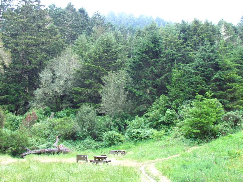 Glen Camp