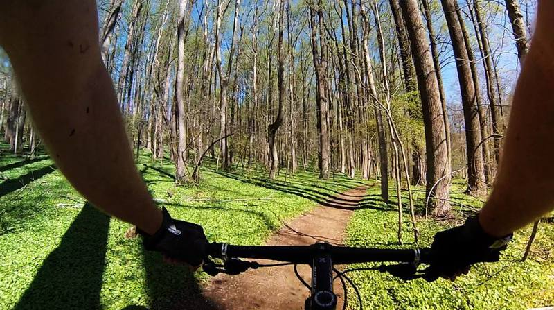 Riding the spring lushness
