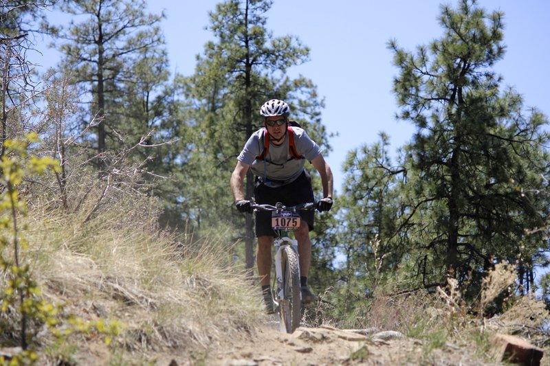 Rambling on Trail 392