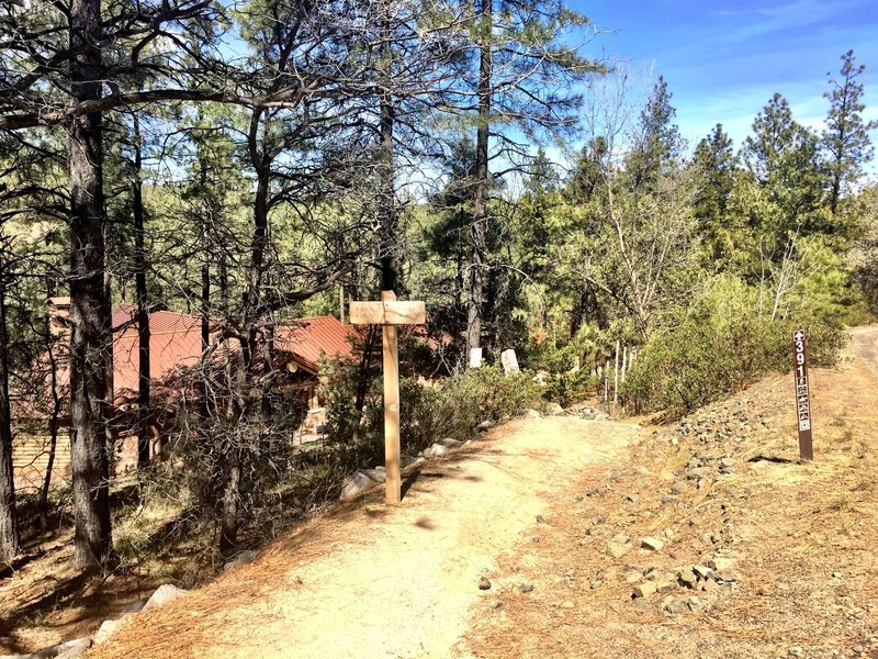 Entrance to Trail 391 from Copper Basin Rd