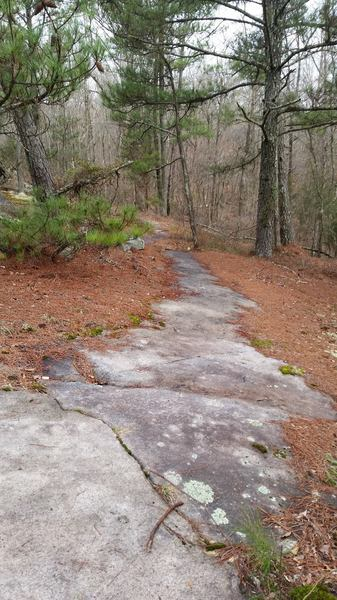 Granite is always popping up at Clinton.  On the Granite Loop Trail