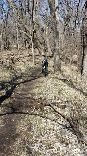 Riding the levy on the West Trail