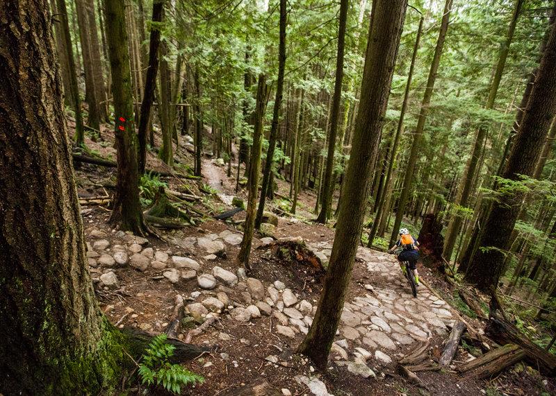 Descending big steeps on Baden Powell trail.