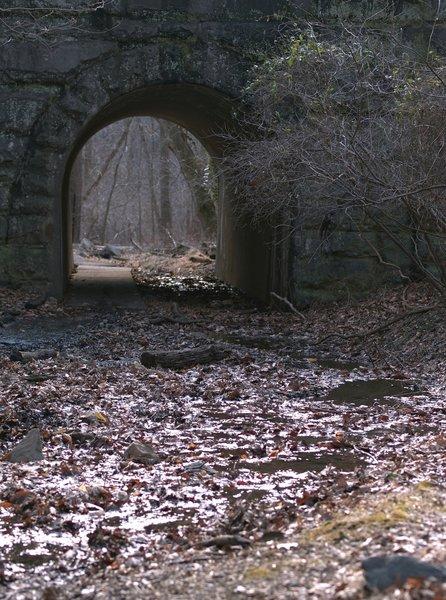 Patapsco Muddy Path & Foot Tunnel (Catonsville, MD)