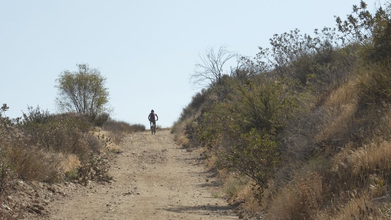 Elsmere Canyon Open Space