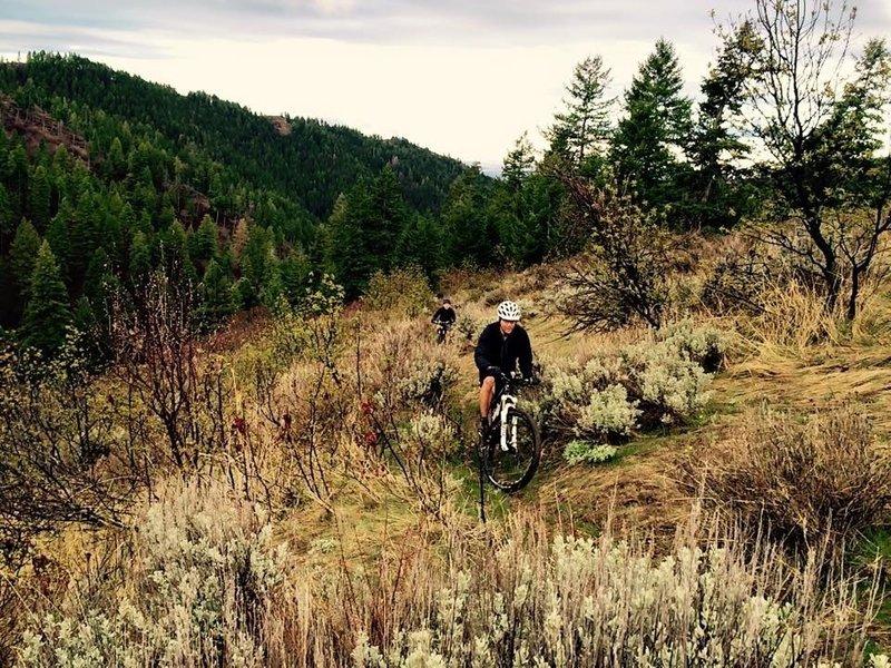 Shingle Creek climb