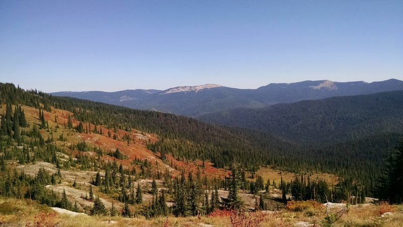 Looking NE to Lookout Mountain from the Marble Divide Trail #275