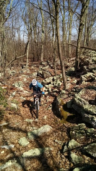 County Line Trail doesn't skimp on the rocks!